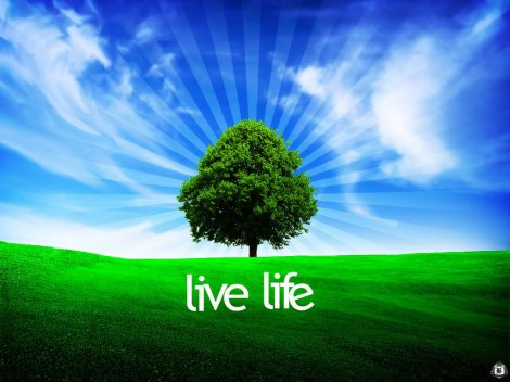 live_life_